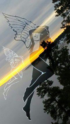 fog angels flying sunsise
